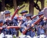 Militia & Mobs