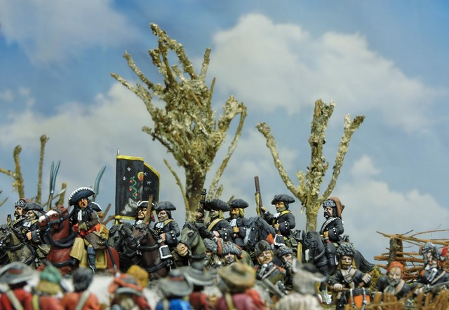 4P005 For Prince or King? Land battles of the 1688 Dutch invasion