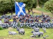 Scots Militia shooting sheep in Ayrshire!