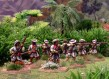 Spanish Colonial Infantry Unit 2